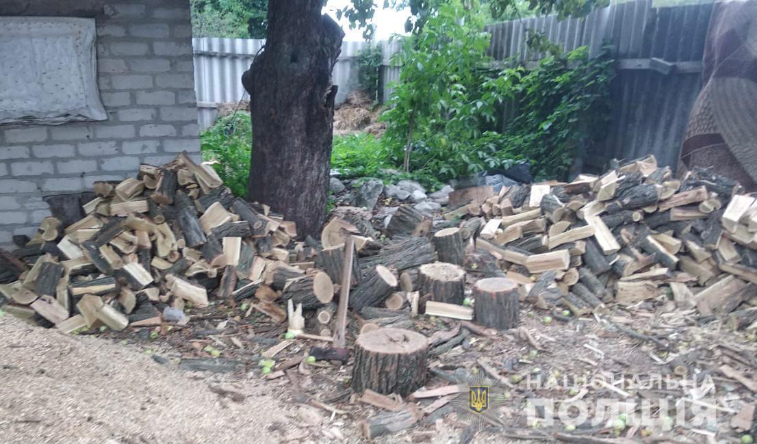 На Харьковщине задержали четверых местных жителей, которые рубили ценные породы деревьев (фото)