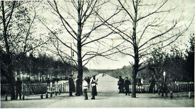 Вход на центральную аллею городского парка