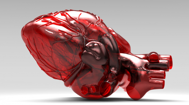 В мире пересадили первое искусственное сердце