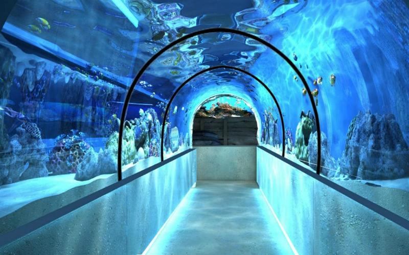 Океанариум в Харьковском зоопарке заработает через 1,5 – 2 года