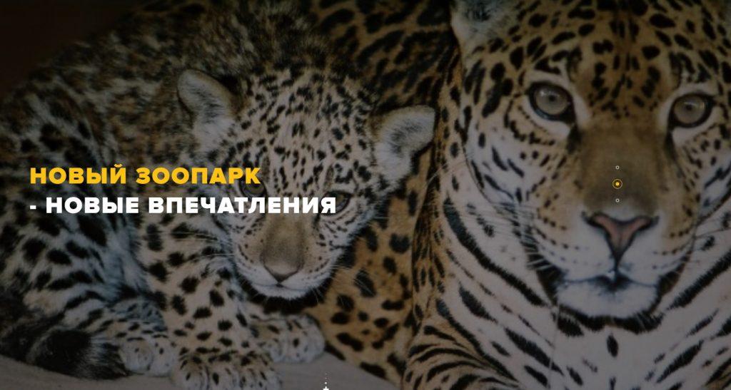 В Харьковском зоопарке рассказали, когда пустят иногородних