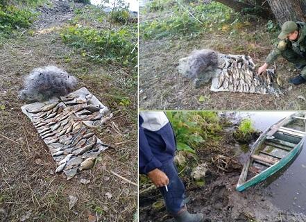 В Харьковской области рыбак ловил краснокнижных карасей запрещенными сетями