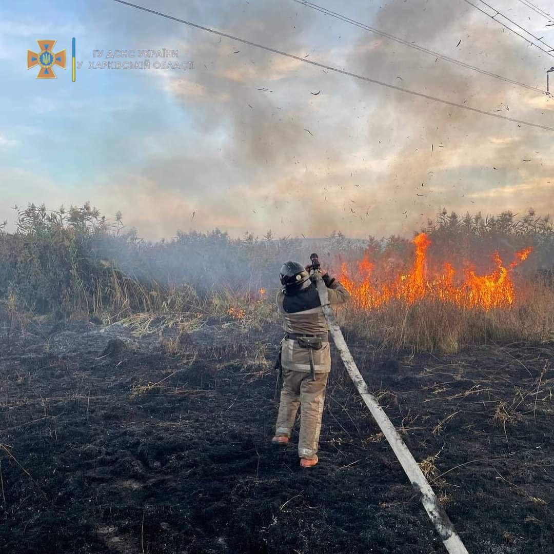В Харьковской области за сутки случилось 38 пожаров