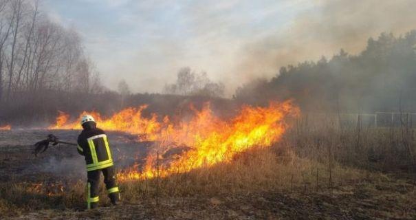 В Харьковской области за сутки произошло 58 пожаров в природных экосистемах