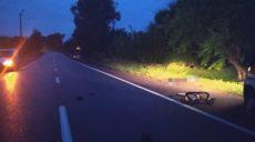 Под Харьковом насмерть сбита велосипедистка (фото)