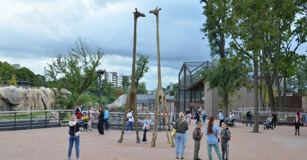 В Харькове распространяют фейковые пригласительные в зоопарк – горсовет