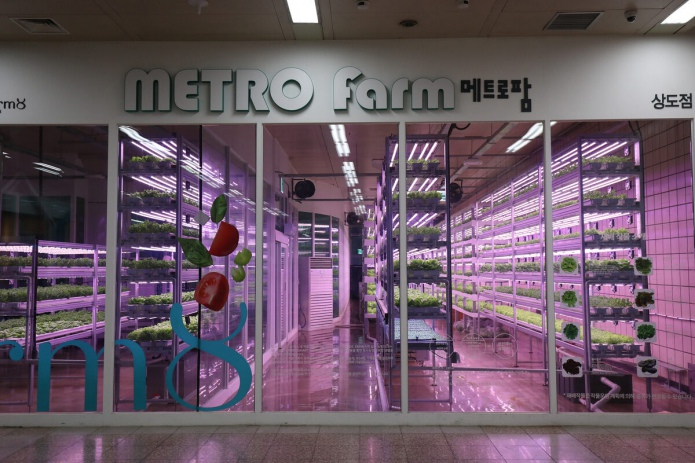 В Сеуле овощи выращивают прямо в метрополитене (фото)