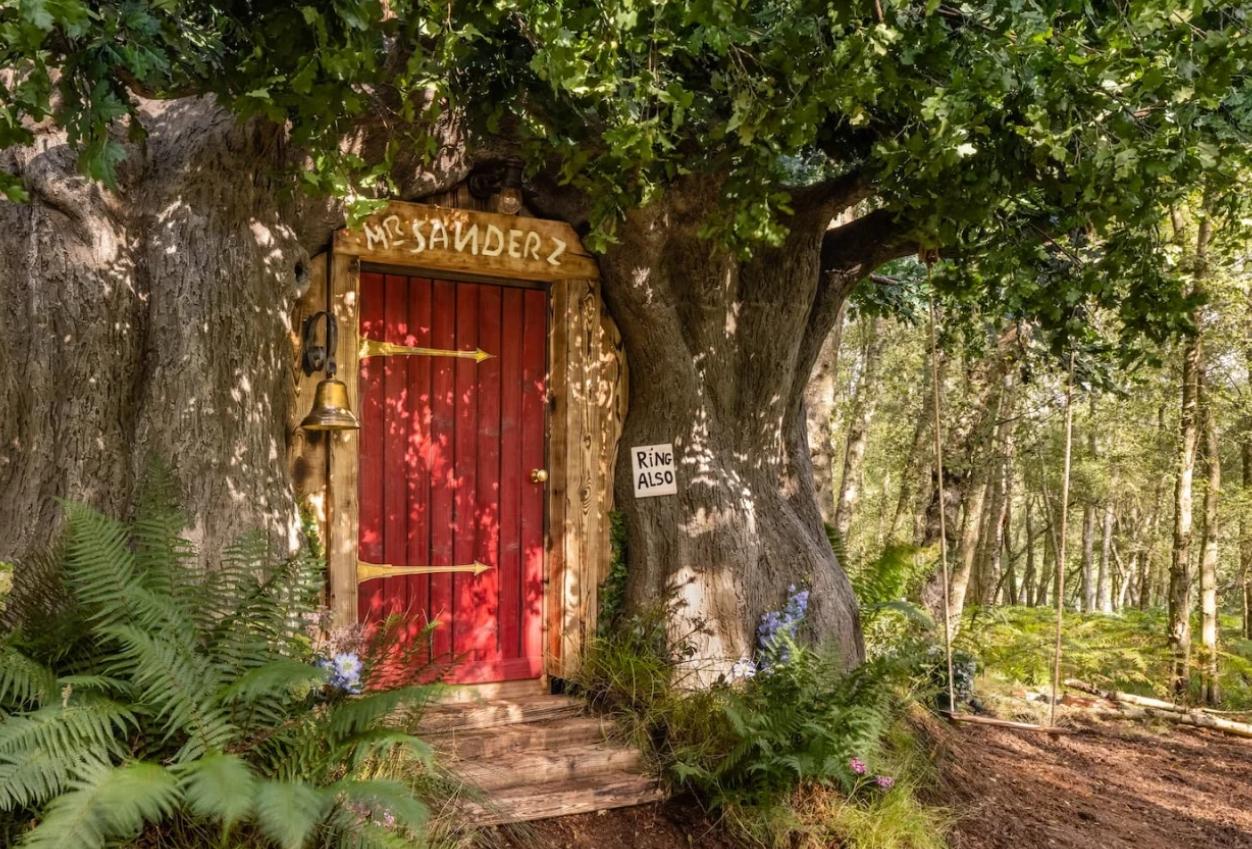 В Великобритании появился настоящий домик Винни-Пуха (фото)